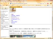 20081212_erin02