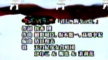 20090110_marihori02